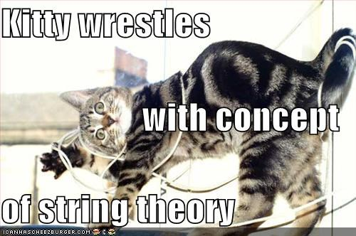 Kitty wrestles with concept of string theory
