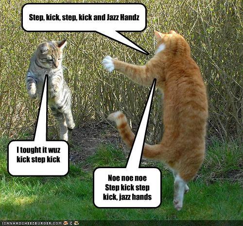 I tought it wuz kick step kick step snap