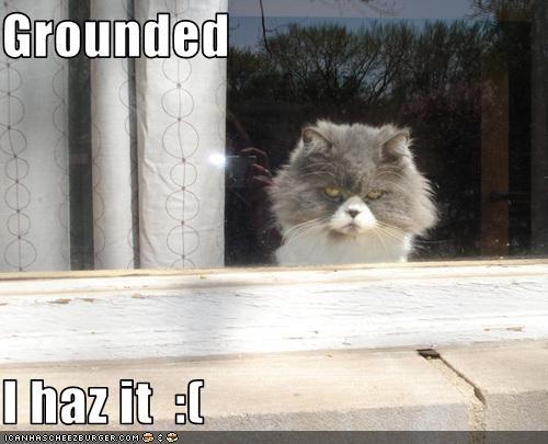 Grounded  I haz it  :(