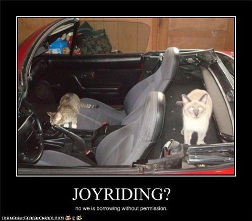 JOYRIDING?
