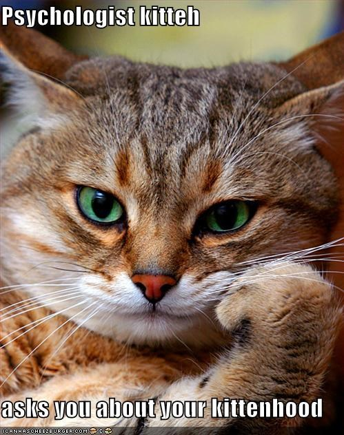 Psychologist kitteh   asks you about your kittenhood