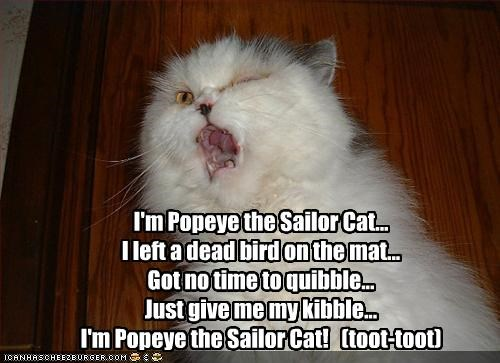 I'm Popeye the Sailor Cat... I left a dead bird on the mat... Got no time to quibble... Just give me my kibble... I'm Popeye the Sailor Cat!   (toot-toot)