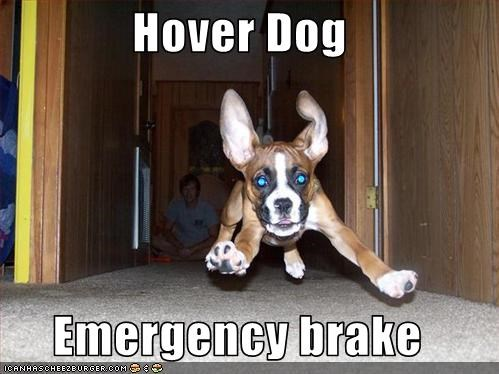 Hover Dog  Emergency brake