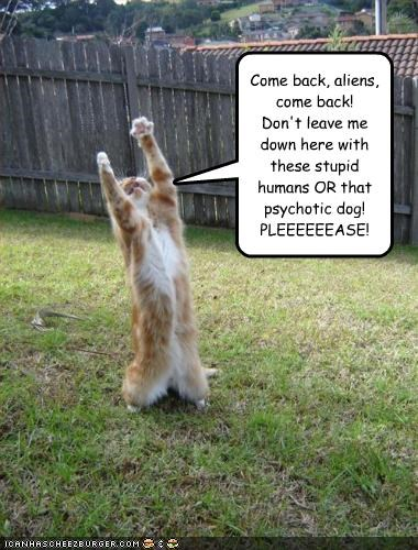 Come back, aliens, come back! Don't leave me down here with these stupid humans OR that psychotic dog! PLEEEEEEASE!