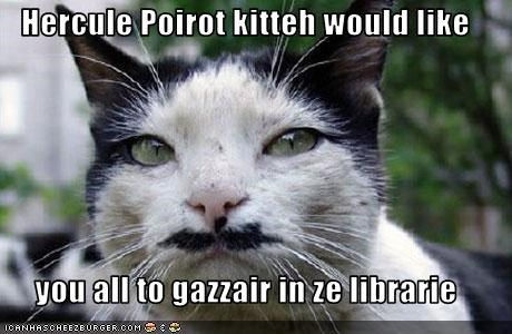 Hercule Poirot kitteh would like   you all to gazzair in ze librarie