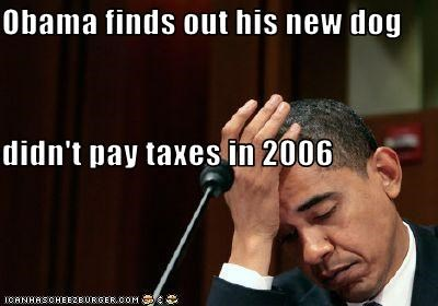 Obama finds out his new dog didn't pay taxes in 2006