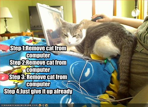 Step 1:Remove cat from computer Step 2:Remove cat from computer Step 3: Remove cat from computer Step 4:Just give it up already