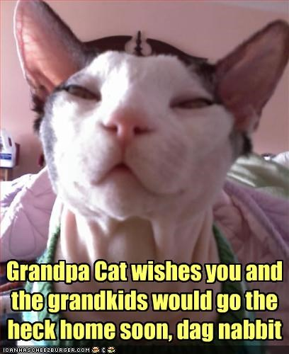 Grandpa Cat wishes you and the grandkids would go the heck home soon, dag nabbit