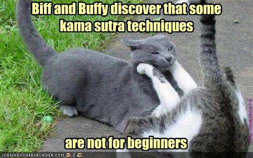 Biff and Buffy discover that some  kama sutra techniques