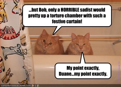 ...but Bob, only a HORRIBLE sadist would pretty up a torture chamber with such a festive curtain!
