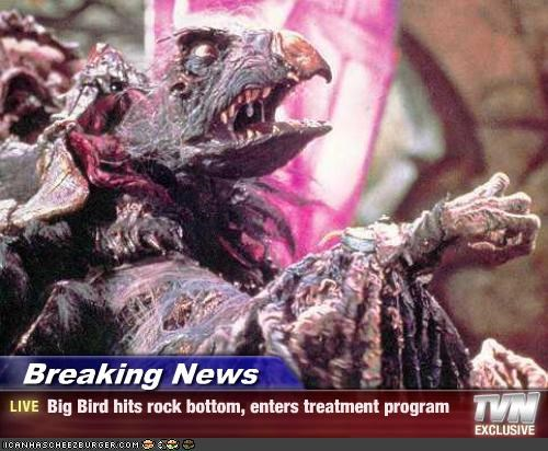 Breaking News - Big Bird hits rock bottom, enters treatment program