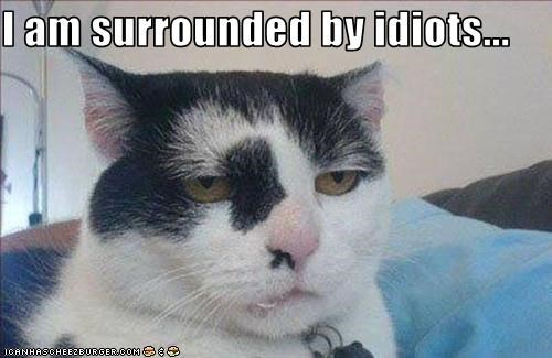 I am surrounded by idiots...