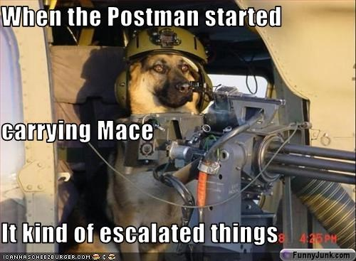 When the Postman started  carrying Mace It kind of escalated things