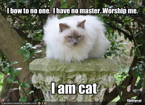 I bow to no one.  I have no master. Worship me.