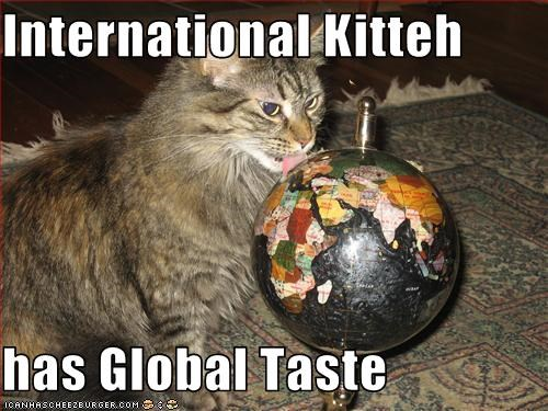 International Kitteh  has Global Taste