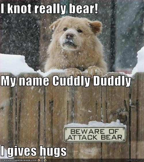 I knot really bear! My name Cuddly Duddly I gives hugs