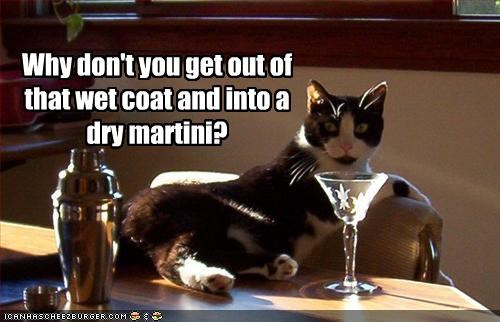 Why don't you get out of that wet coat and into a dry martini?