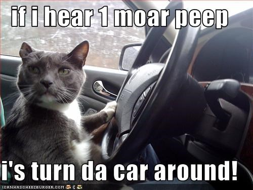 if i hear 1 moar peep  i's turn da car around!