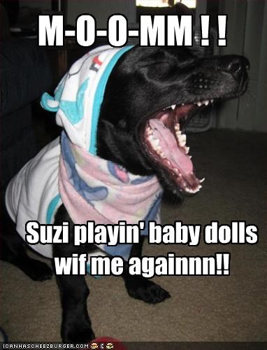 baby,costume,dolls,labrador,mom