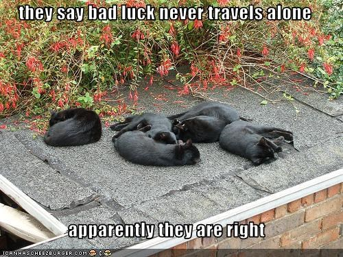 they say bad luck never travels alone  apparently they are right