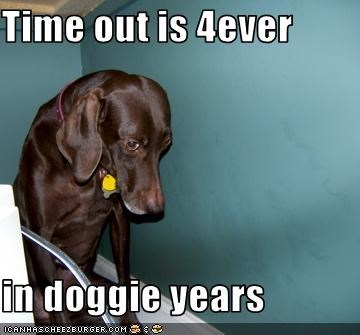 Time out is 4ever  in doggie years