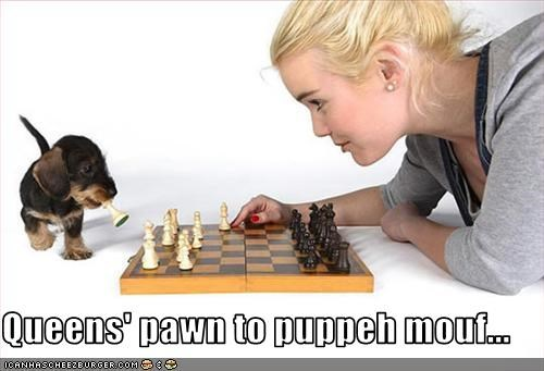 Queens' pawn to puppeh mouf...