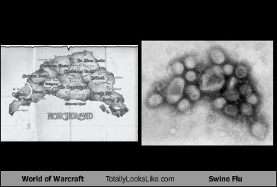 World of Warcraft Totally Looks Like Swine Flu