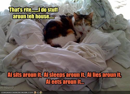 That's rite.......I do stuff aroun teh house.....