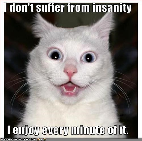 I don't suffer from insanity  I enjoy every minute of it.
