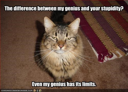 The difference between my genius and your stupidity?