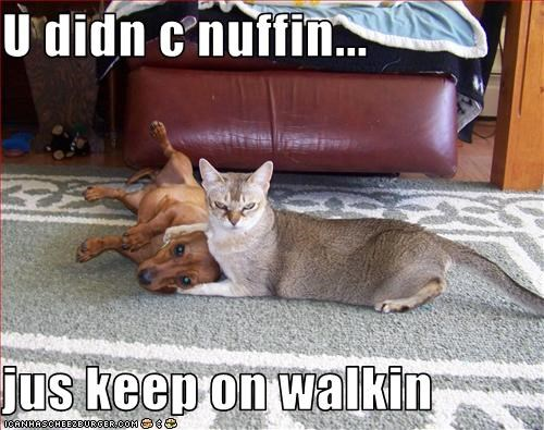 U didn c nuffin...  jus keep on walkin