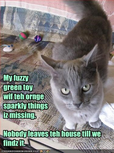 My fuzzy  green toy  wif teh ornge  sparkly things  iz missing.  Nobody leaves teh house till we findz it.