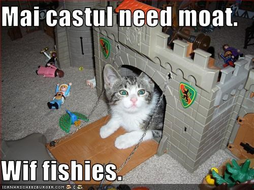 Mai castul need moat.  Wif fishies.