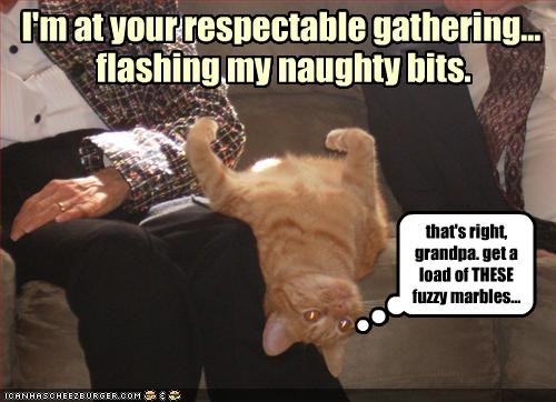 I'm at your respectable gathering...