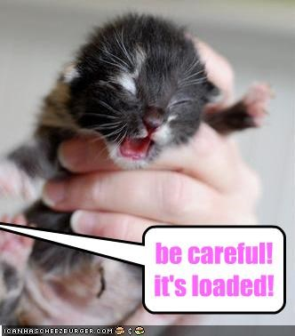 be careful! it's loaded!