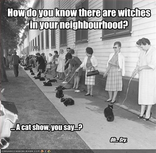 How do you know there are witches in your neighbourhood?