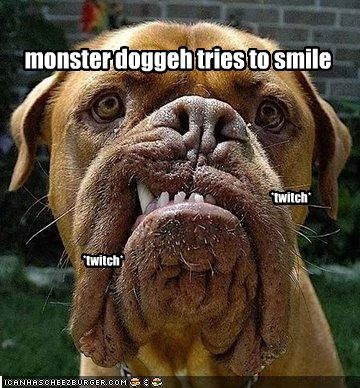 monster doggeh tries to smile