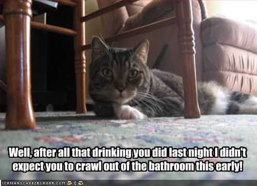Well, after all that drinking you did last night I didn't expect you to crawl out of the bathroom this early!