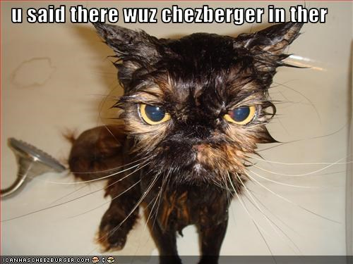 u said there wuz chezberger in ther