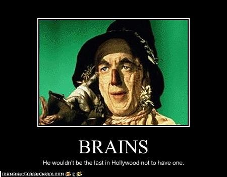 brains,classic hollywood,ray bolger,stupid,the wizard of oz