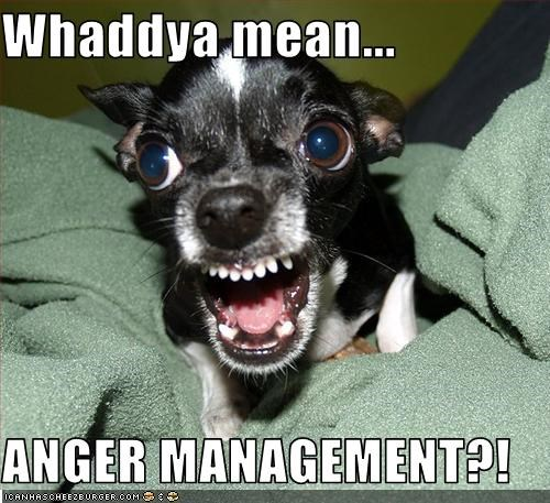 Whaddya mean...  ANGER MANAGEMENT?!
