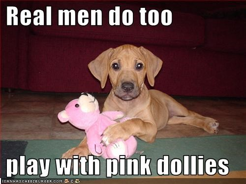 cuddle,dolls,manly,pink,playing,puppy,stuffed animal,tough,vizsla