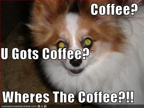 Coffee? U Gots Coffee? Wheres The Coffee?!!