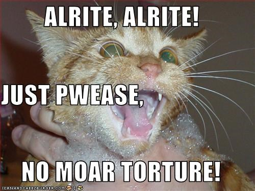 ALRITE, ALRITE! JUST PWEASE, NO MOAR TORTURE!