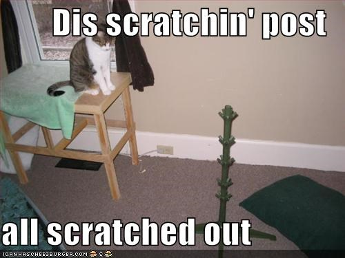 Dis scratchin' post  all scratched out
