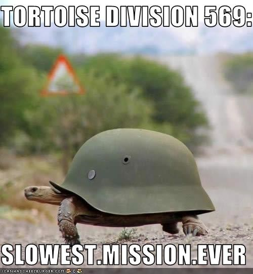 TORTOISE DIVISION 569:  SLOWEST.MISSION.EVER