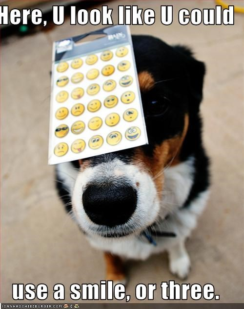 happy,need,share,smile,stickers,whatbreed