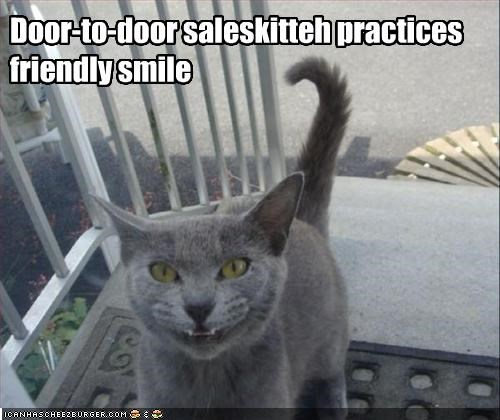 Door-to-door saleskitteh practices friendly smile