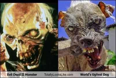 Evil Dead II Monster Totally Looks Like World's Ugliest Dog