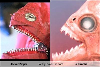 Jacket Zipper Totally Looks Like a Piranha